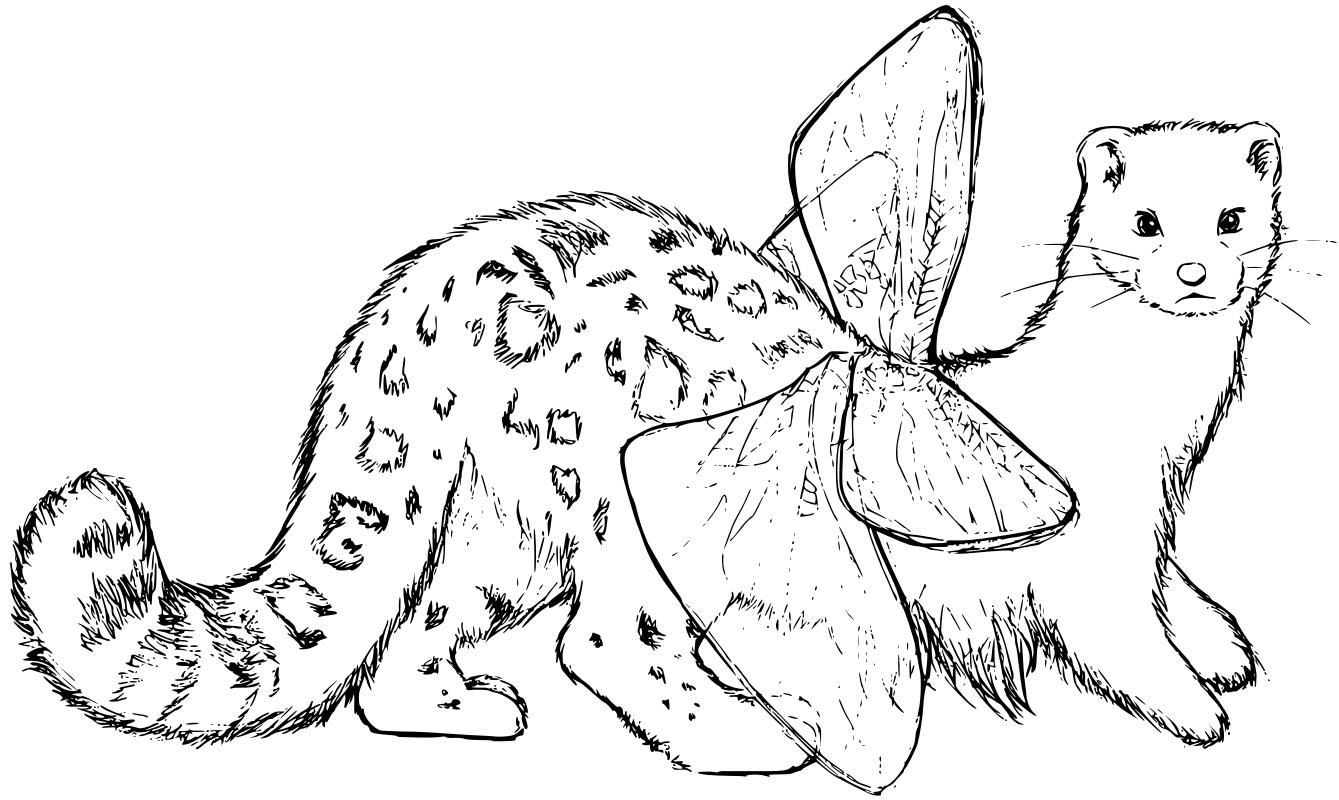 lumikkoleokorento_vector